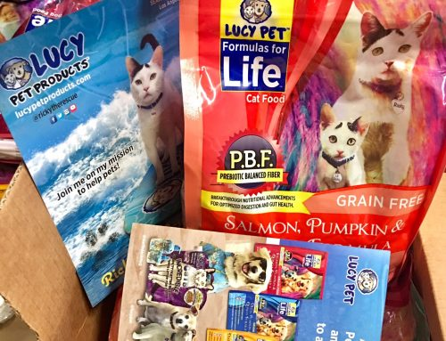 Lucy Pet Cat Food and Dog Food Grabs Attention
