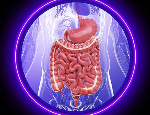 How dietary fiber helps the intestines maintain health