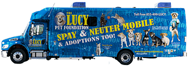 Lucy Pet bus