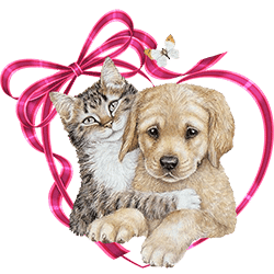 toxic love valentines day gifts can be deadly to your pets